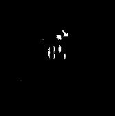 Logo BSR Black.png