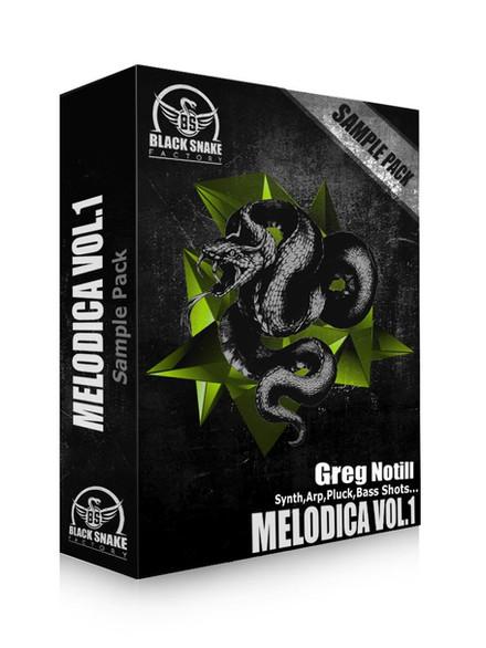 BSF Bundle (Melodica vol1 Greg Notill).j