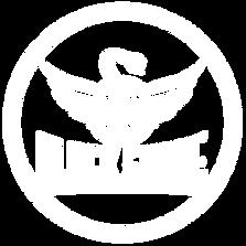 Logo BSR White Transparent.png