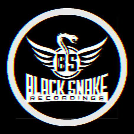 Black Snake Artist´s in the Beatport Top 100 hype Charts!
