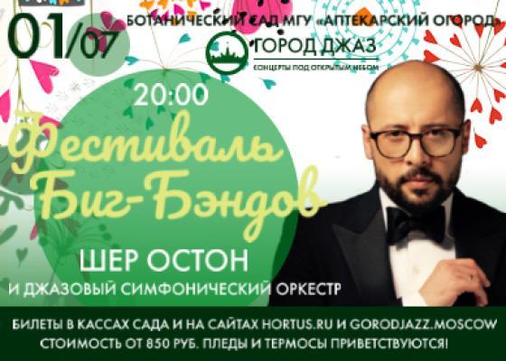 """Фестиваль Биг - Бэндов """"Город джаз"""""""