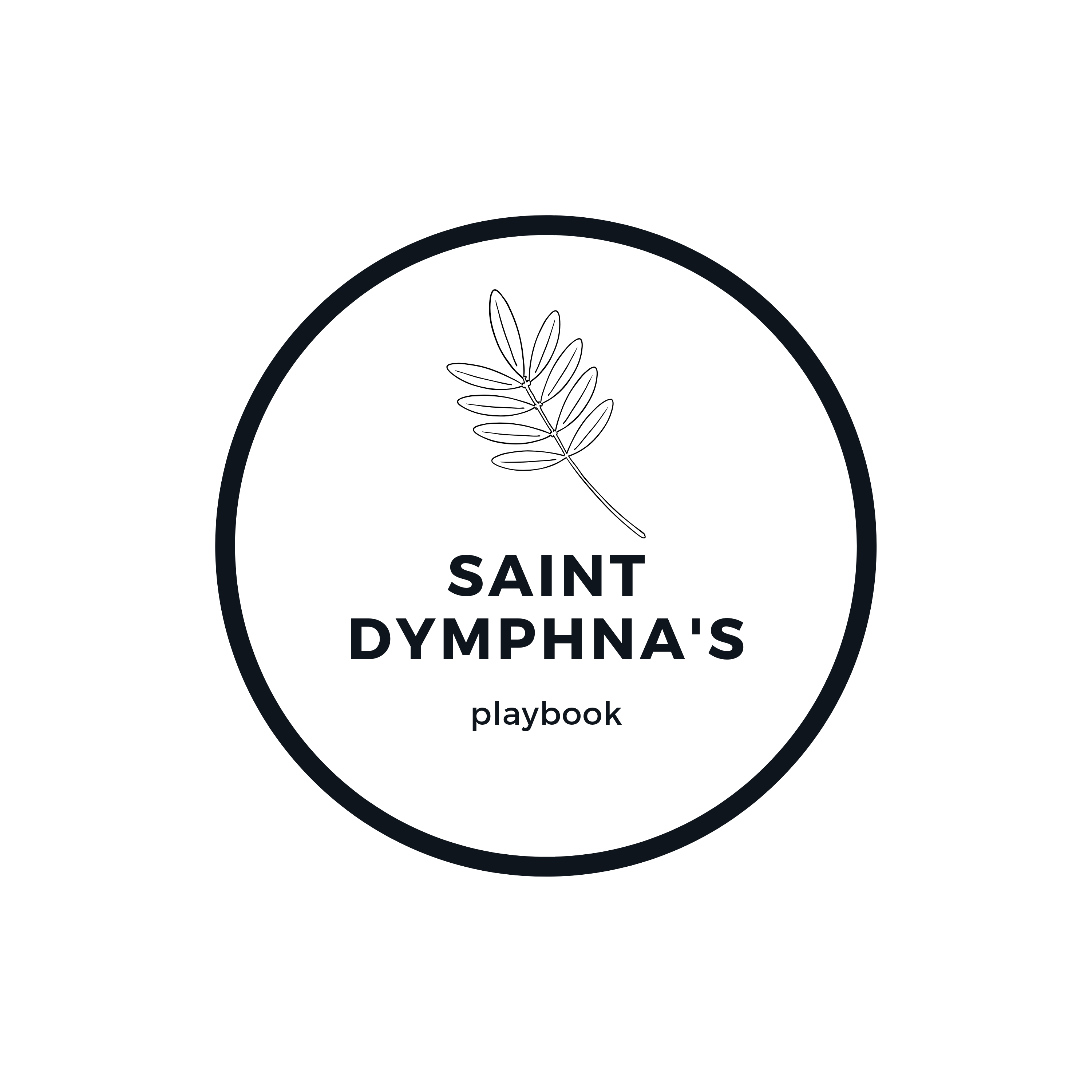 saint dymphna's playbook