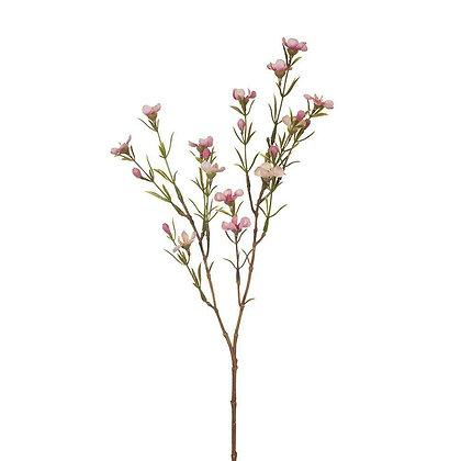Pink Wax Flower Stem Spray