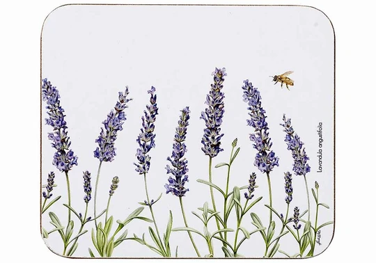 Ashdene Lavender Fields Coasters Set Of 4