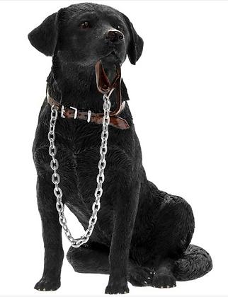 Black Labrador Large