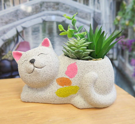 Urban Products - Cat with Succulent