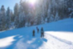 Gibswil Umgebung Winter-60.jpg