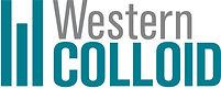 WC-Logo_NO-Layers-2-1-1200x484.jpg