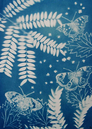 Cyanotype with Drypoint plate and plant