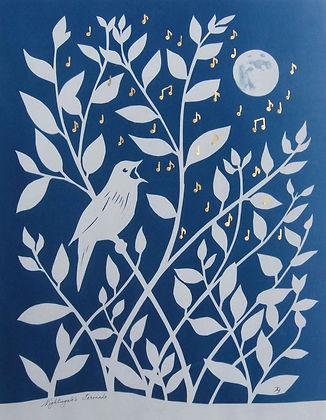 'Nightingale's Serenade'.jpg