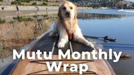 Mutu Monthly Wrap - Oct 2020