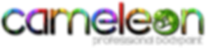 Cameloon logo.png