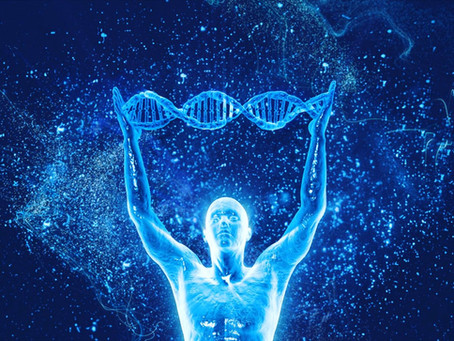 Beginner's Guide on Cellular Nutrition and the Mind-Body Connection