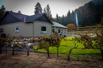 The Vineyard-4.jpg