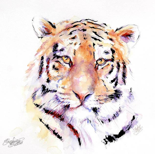 Panthera Tiger V