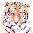 Panthera%20Tiger%20V%2029x29_edited.jpg