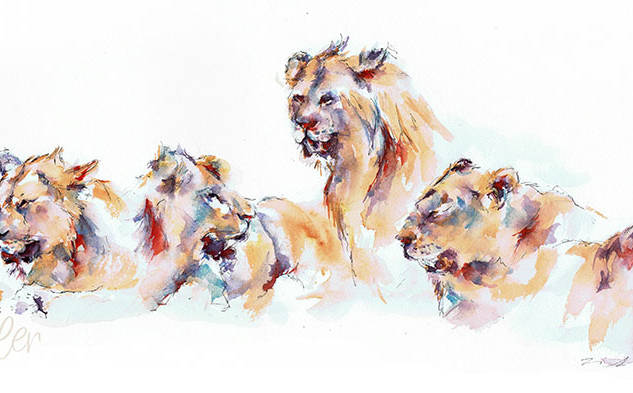 Pride of Samburu