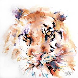 Panthera Tiger II