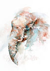 watercolour wildlife by Stephie Butler