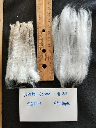 #34 white cormo