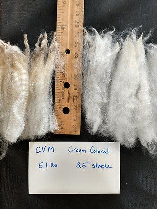 Cream Color CVM