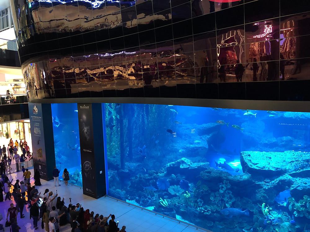 Aquarium en el Dubai Mall
