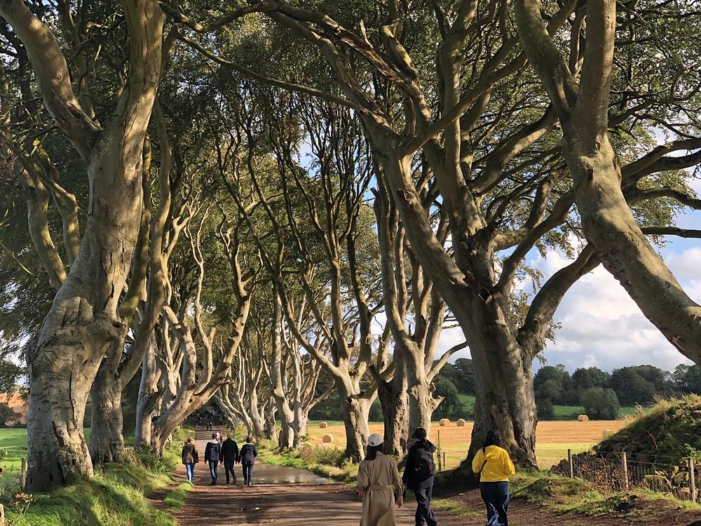 Juego de Tronos Irlanda del Norte