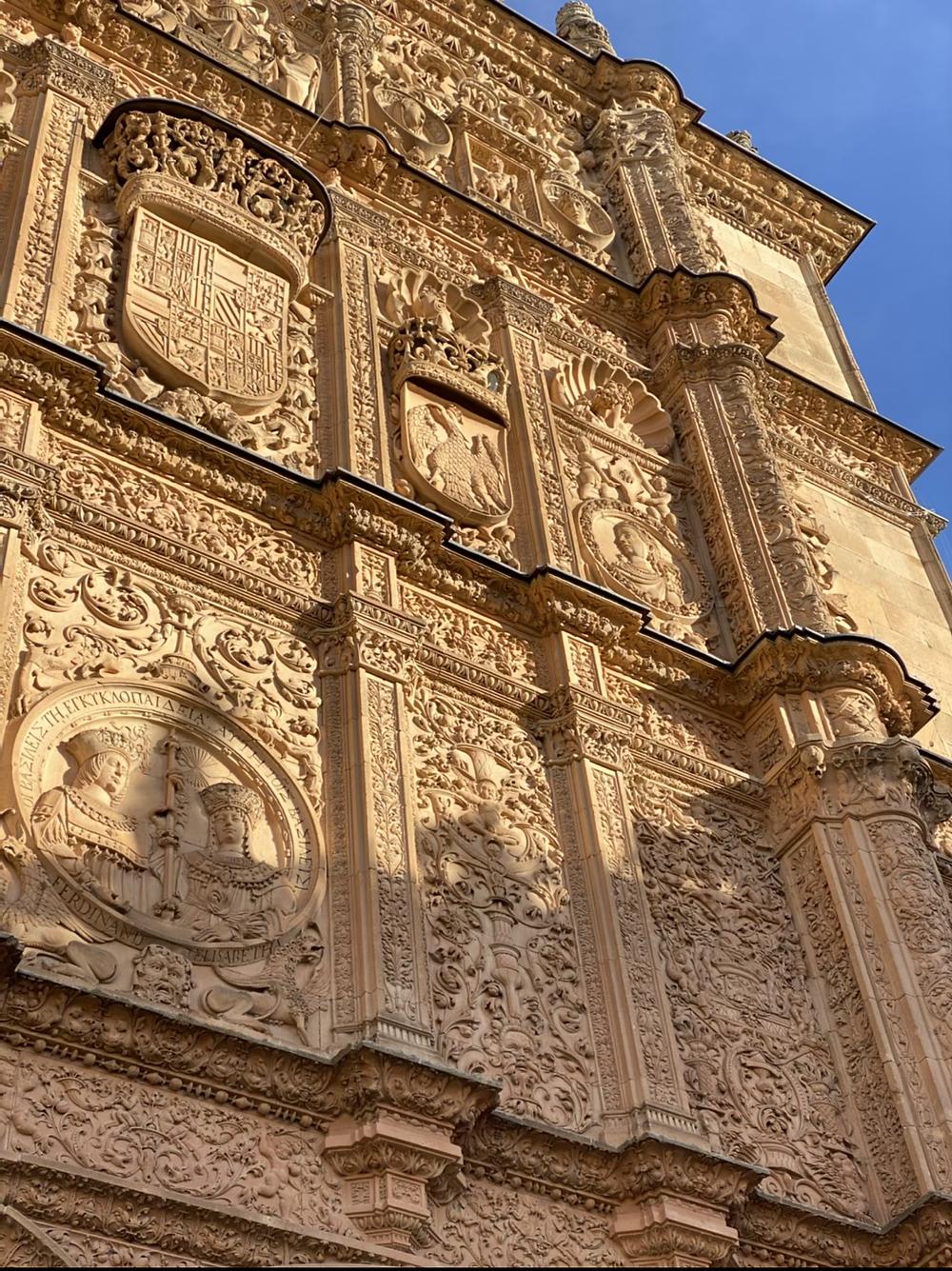 Rana de la Universidad Salamanca
