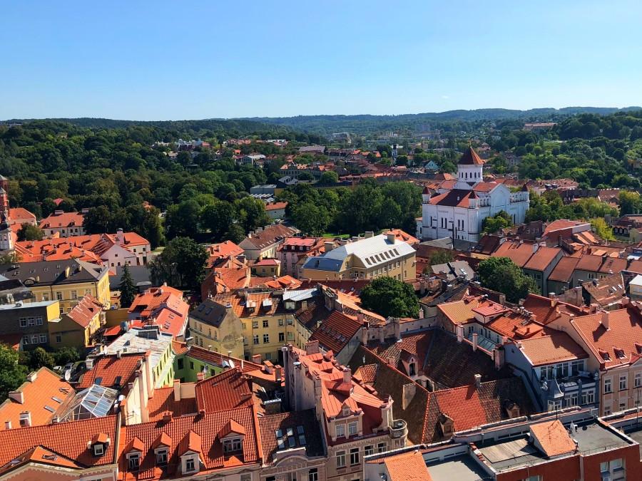 Vista panoramica desde la torre de la Universidad de Vilna