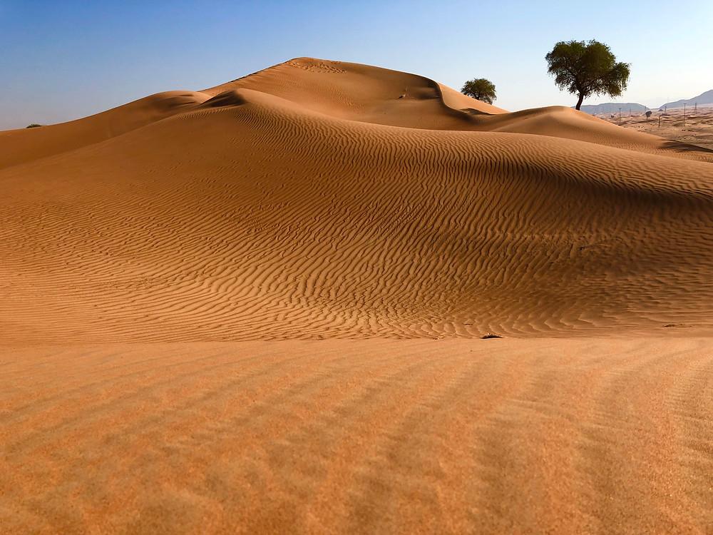 Formas en la arena provocadas por la acción del viento