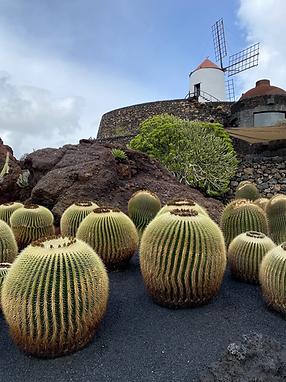 Lugares que ver en Lanzarote