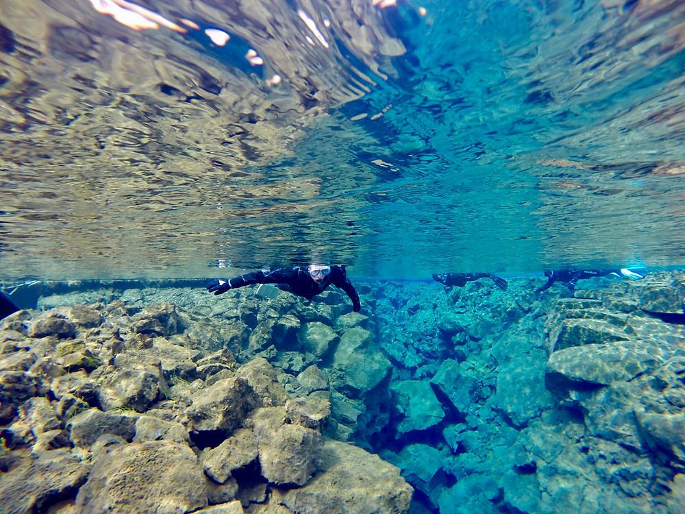 Snorkel en Silfra