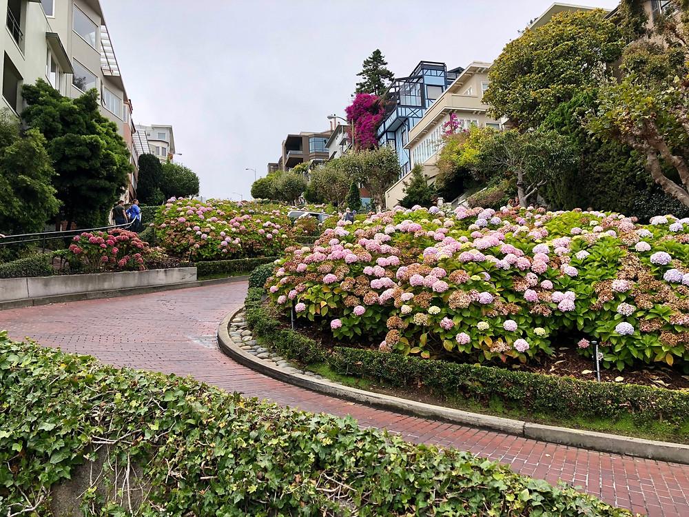 Imagen de la famosa Lombard Street de San Francisco