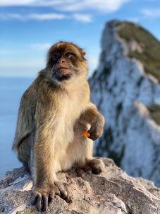 Lugares que ver en Gibraltar