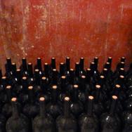 Rudi Vindimian wine maker (Lavis, Trentino Alto Adige)