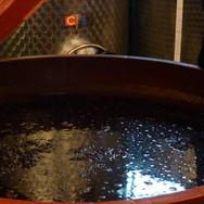Podere Pradarolo wine maker (Parma, Emilia Romagna)