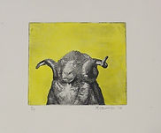limited edition etching of  ram by Michael Edwards