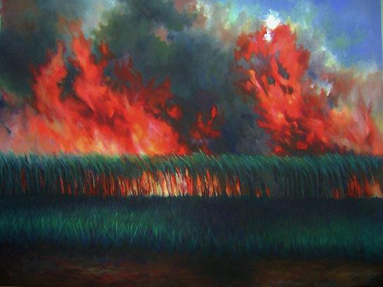 landscape, cane burning,