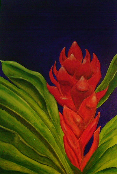"Oil Painting on canvas ""Ginger Burs't"