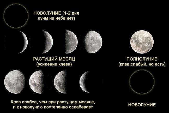 Фазы луны.jpg