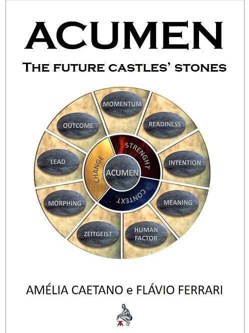 ACUMEN | The Future Castles' Stones
