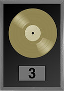 Record Icon For Website - Gold.jpg