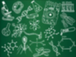 biology_sketches.jpg