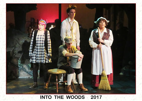 2017 Into the Woods 2.jpg
