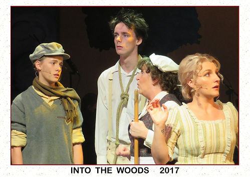 2017 Into the Woods 8a.jpg