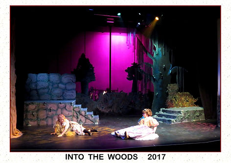 2017 Into the Woods 4a.jpg