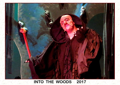 2017 Into the Woods 5.jpg