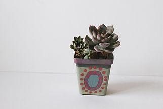 Josuppose-hand-painted-pot-plants.jpg