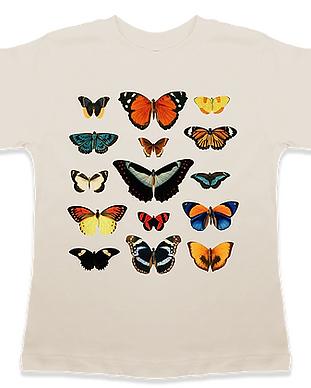 Screenshot_2020-06-26 Butterflies Modern