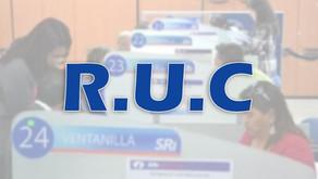 SRI estableció la información del certificado del Registro Único de Contribuyente (RUC)